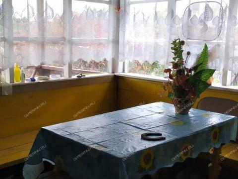 dacha-derevnya-ohotino-bogorodskiy-rayon фото